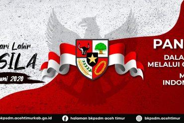 Pengumuman Penetapan Kelulusan Peserta UD dan UPKP PNS Daerah Provinsi Aceh 2020