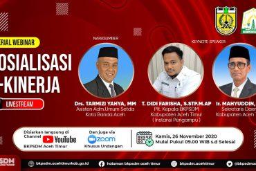 Pengumuman Tentang Jadwal dan Persyaratan Pemberkasan Pengangkatan Calon Pegawai Pemerintah dengan Perjanjian Kerja Pemerintah Kabupaten Aceh Timur Formasi Tahun 2019
